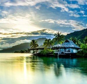 Allergie au tahiti : comment bien acheter ses médicaments ?